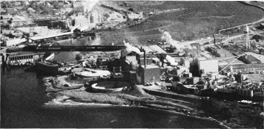 Aerial photo of International Falls and Fort Frances Facilities in 1981